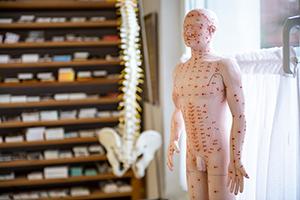 Akupunktur Troisdorf